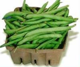 Haricots verts. Source : http://data.abuledu.org/URI/5099391b-haricot-vert