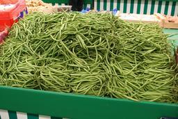 Haricots verts. Source : http://data.abuledu.org/URI/5047ac3b-haricots-verts