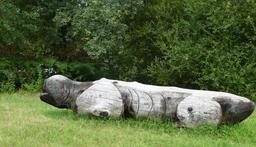 Hippopotame au parc du Bourgailh. Source : http://data.abuledu.org/URI/5826cf94-hippopotame-au-parc-du-bourgailh