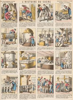 Histoire du sucre en seize vignettes. Source : http://data.abuledu.org/URI/546fdac8-histoire-du-sucre-en-seize-vignettes