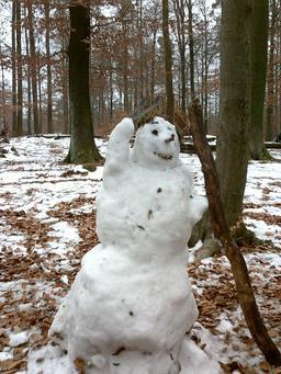Homme des bois en neige. Source : http://data.abuledu.org/URI/50f89021-homme-des-bois-en-neige