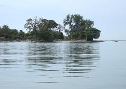 Île de Carabane en Casamance. Source : http://data.abuledu.org/URI/54936388-ile-de-carabane-en-casamance