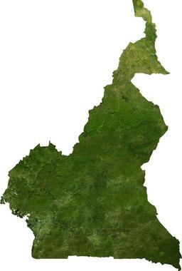 Image-satellite du Cameroun. Source : http://data.abuledu.org/URI/52daa424-image-satellite-du-cameroun