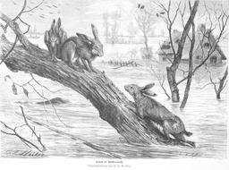 Inondation en 1886. Source : http://data.abuledu.org/URI/58b31054-inondation-en-1886