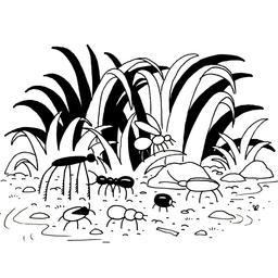 Insectes de jardin. Source : http://data.abuledu.org/URI/52d7ac01-insectes-de-jardin
