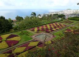 Jardin botanique dans l'île de Madère. Source : http://data.abuledu.org/URI/5508999f-jardin-botanique-dans-l-ile-de-madere