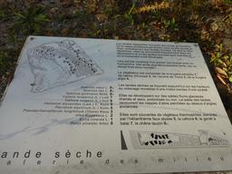 Jardin botanique de Bordeaux. Source : http://data.abuledu.org/URI/580a990d-jardin-botanique-de-bordeaux