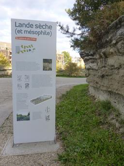 Jardin botanique de Bordeaux. Source : http://data.abuledu.org/URI/580a9990-jardin-botanique-de-bordeaux