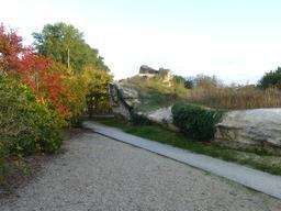 Jardin botanique de Bordeaux. Source : http://data.abuledu.org/URI/580a9a72-jardin-botanique-de-bordeaux