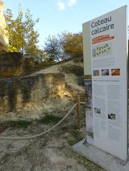 Jardin botanique de Bordeaux. Source : http://data.abuledu.org/URI/580a9b6e-jardin-botanique-de-bordeaux