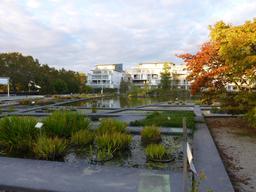 Jardin botanique de Bordeaux. Source : http://data.abuledu.org/URI/580aa46e-jardin-botanique-de-bordeaux