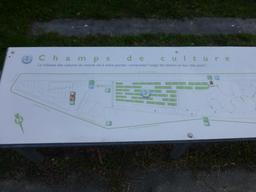 Jardin botanique de Bordeaux. Source : http://data.abuledu.org/URI/580aa613-jardin-botanique-de-bordeaux