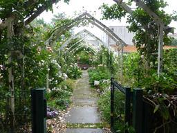 Jardin botanique de La Rochelle. Source : http://data.abuledu.org/URI/5821b947-jardin-botanique-de-la-rochelle
