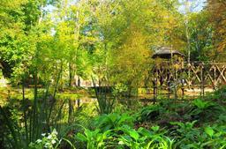 Jardin botanique de Léonard de Vinci à Clos Lucé. Source : http://data.abuledu.org/URI/54b99285-jardin-botanique-de-leonard-de-vinci-a-clos-luce