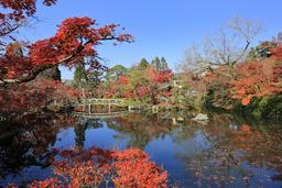 Jardin bouddhique Eikan-do Zenrin-ji en automne. Source : http://data.abuledu.org/URI/59da9b19-jardin-bouddhique-eikan-do-zenrin-ji-en-automne