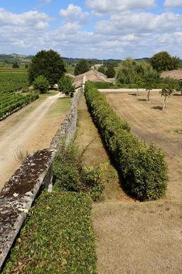 Jardin dans un vignoble. Source : http://data.abuledu.org/URI/5046377c-jardin-dans-un-vignoble