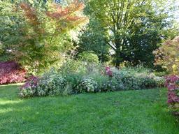 Jardin du musée de l'école de Nancy. Source : http://data.abuledu.org/URI/5818fe75-jardin-du-musee-de-l-ecole-de-nancy