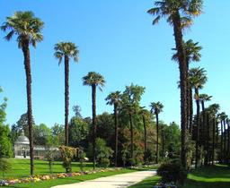 Jardin Massey à Tarbes. Source : http://data.abuledu.org/URI/5103bd72-jardin-massey-a-tarbes