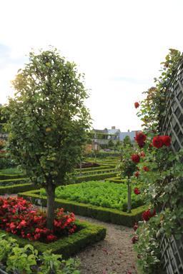 Jardin potager de Villandry. Source : http://data.abuledu.org/URI/55e7589a-jardin-potager-de-villandry