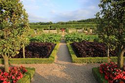 Jardin potager de Villandry. Source : http://data.abuledu.org/URI/55e75ec5-jardin-potager-de-villandry