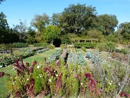 Jardin potager en Dordogne. Source : http://data.abuledu.org/URI/510b1793-jardin-potager-en-dordogne