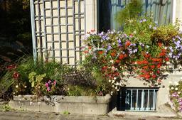 Jardinières d'automne au musée de l'école de Nancy. Source : http://data.abuledu.org/URI/5818f656-jardinieres-d-automne-au-musee-de-l-ecole-de-nancy