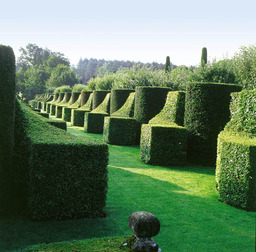Jardins d'Eyrignac. Source : http://data.abuledu.org/URI/501c577f-jardins-d-eyrignac