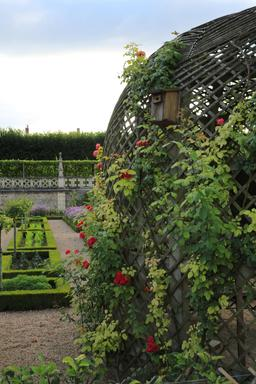 Jardins de Villandry-37.. Source : http://data.abuledu.org/URI/55e75423-jardins-de-villandry-37-
