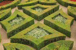 Jardins de Villandry. Source : http://data.abuledu.org/URI/55e6e060-jardins-de-villandry