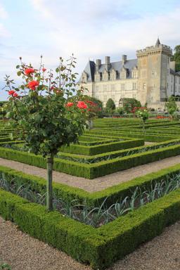 Jardins de Villandry. Source : http://data.abuledu.org/URI/55e75318-jardins-de-villandry