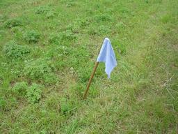 Jeu de drapeau. Source : http://data.abuledu.org/URI/52b381bf-jeu-de-drapeau