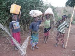 Jeunes africains revenant du champ. Source : http://data.abuledu.org/URI/58c72450-jeunes-africains-revenant-du-champ
