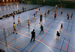 Jeux de volley-ball. Source : http://data.abuledu.org/URI/52b97f46-jeux-de-volley-ball