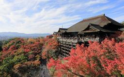 Kiyomizu-dera à Kyoto. Source : http://data.abuledu.org/URI/5949105a-kiyomizu-dera-a-kyoto