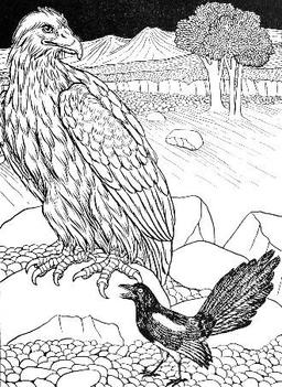 L'Aigle et la Pie. Source : http://data.abuledu.org/URI/519bfcda-l-aigle-et-la-pie