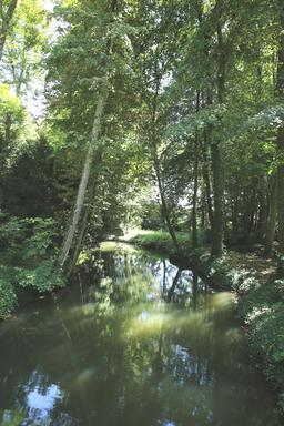 L'Amasse dans le parc du Clos Lucé. Source : http://data.abuledu.org/URI/55cd1802-l-amasse-dans-le-parc-du-clos-luce