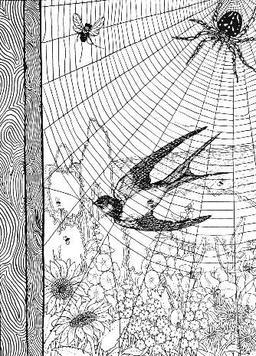 L'araignée et l'hirondelle. Source : http://data.abuledu.org/URI/519c91b1-l-araignee-et-l-hirondelle