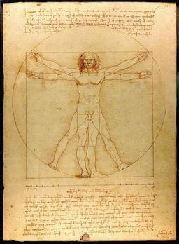 L'Homme de Vitruve par Léonard de Vinci. Source : http://data.abuledu.org/URI/55cda142-l-homme-de-vitruve-par-leonard-de-vinci