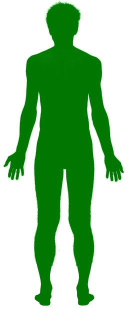 L'homme vert. Source : http://data.abuledu.org/URI/514e3967-l-homme-vert