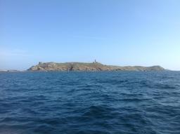 L'île aux Moines en Bretagne. Source : http://data.abuledu.org/URI/5357d26c-l-ile-aux-moines