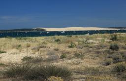 La dune du Pilat vue depuis le Mimbeau. Source : http://data.abuledu.org/URI/55a81d1c-la-dune-du-pilat-vue-depuis-le-mimbeau