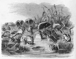 La fable du soleil et des grenouilles en 1855. Source : http://data.abuledu.org/URI/5351bba2-la-fable-du-soleil-et-des-grenouilles-en-1855