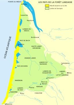 La forêt des Landes. Source : http://data.abuledu.org/URI/50788cb5-la-foret-des-landes