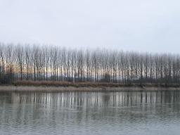 La Garonne en hiver. Source : http://data.abuledu.org/URI/5827e43c-la-garonne-en-hiver