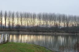 La Garonne en hiver. Source : http://data.abuledu.org/URI/5827e496-la-garonne-en-hiver