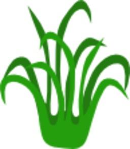 La grande course - Herbe verte. Source : http://data.abuledu.org/URI/555fc5d5-la-grande-course-herbe-verte