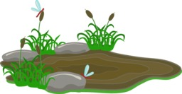 La grande course - Mare de boue. Source : http://data.abuledu.org/URI/555fc61e-la-grande-course-mare-de-boue