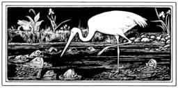La grue et le crabe. Source : http://data.abuledu.org/URI/5098ba49-la-grue-et-le-crabe