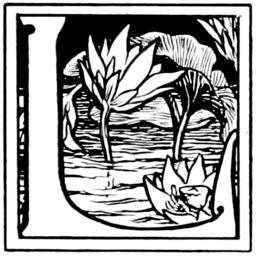 La grue et le crabe. Source : http://data.abuledu.org/URI/5098bbc4-la-grue-et-le-crabe