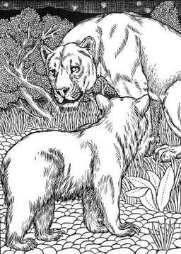 La Lionne et l'Ourse. Source : http://data.abuledu.org/URI/519c97c6-la-lionne-et-l-ourse
